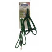 ROPE LEAD WITH SMALL HARNESS GREEN